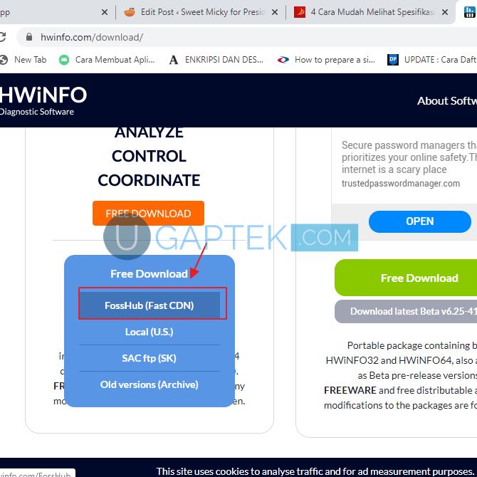 HWINFO