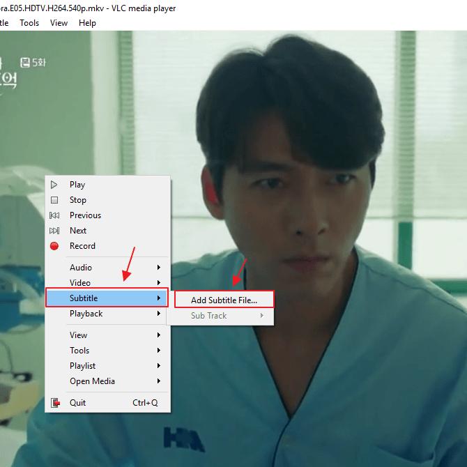 download subtitle